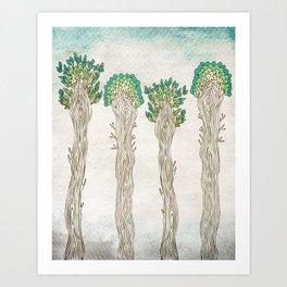 Amazon Trees Art Print