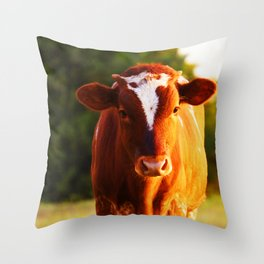 Curious Orange Throw Pillow
