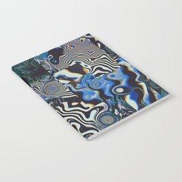 HYPFNA Notebook