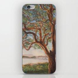 Watching the Sunset iPhone Skin