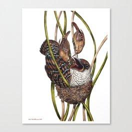 Baby Bird II Canvas Print