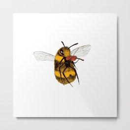 Bee tries Violin Metal Print