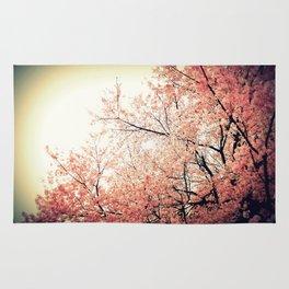 Cherry Blossom Nostalgia Rug