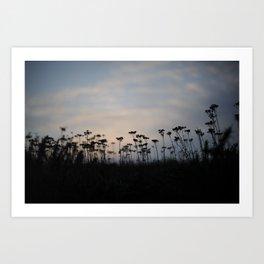 Southerdown Sunset Art Print