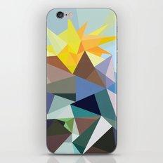Geo-02 iPhone & iPod Skin