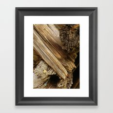 TENNESSEE BACK HILLS Framed Art Print