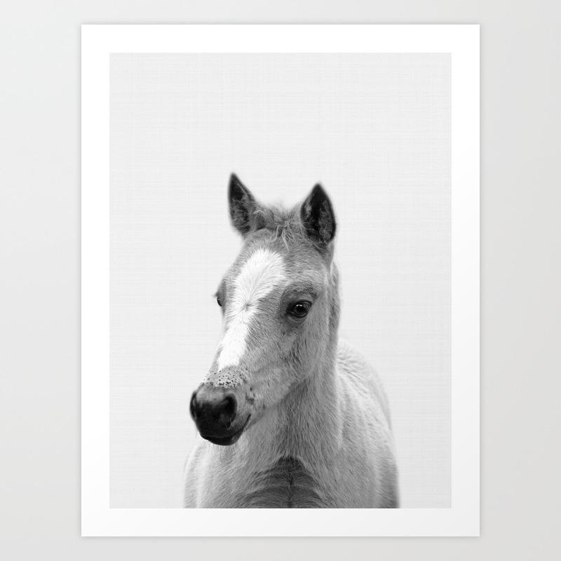 Baby Horse Farm Animal Print Art Print By Nikiandneo Society6