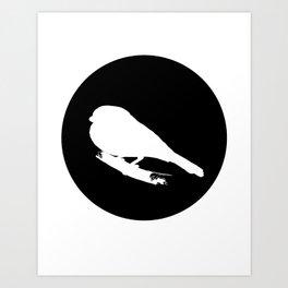 Bullfinch Art Print
