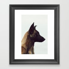 Alert Framed Art Print
