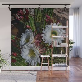 White Argentine_Giant_Cacti in Bloom Wall Mural