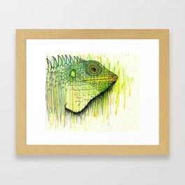 Iguana Framed Art Print