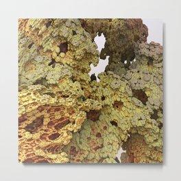 Sandy Coral Metal Print