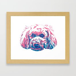 Bichpoo Framed Art Print