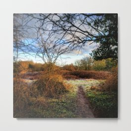 Out of the Woods and Back to the Frosty Path Metal Print