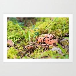 Hydnellum Peckii - Scary Beautiful Mushroom Art Print