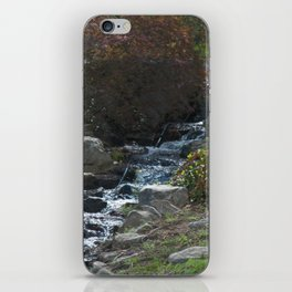 THE SILENCE OF A CREEK DOWN A MOUNTAIN iPhone Skin