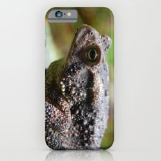 Living Stone Slim Case iPhone 6s