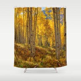 Autumn Aspen Forest in Aspen Colorado USA Shower Curtain
