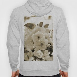 Cherry Blossoms Monochrome Hoody