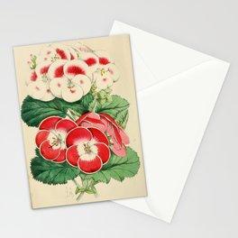 Princess Teck, Leotard Stationery Cards