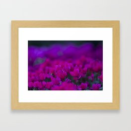 Radiant  Framed Art Print