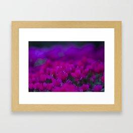 Radiant  Framed Art Print