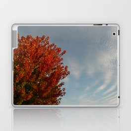 Fall by Teresa Thompson Laptop & iPad Skin