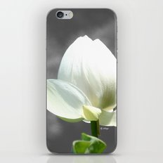 Pure Flower iPhone & iPod Skin