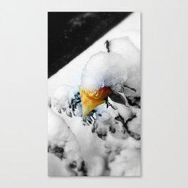 Snowflower Canvas Print