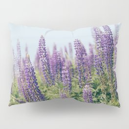 Lupin 1 Pillow Sham