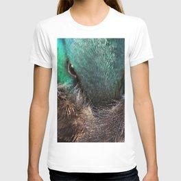 Sleepy mallard duck close-up 1 T-shirt