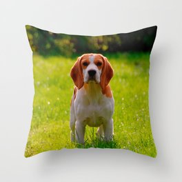 beagle puppy on guard Throw Pillow