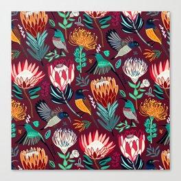 Sunbirds and Proteas On maroon Canvas Print