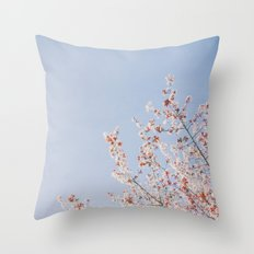 Soft Dreams Throw Pillow