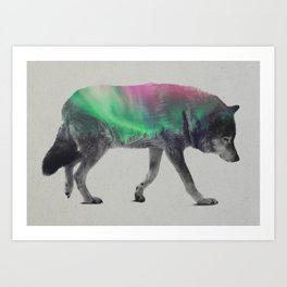 Wolf In The Aurora Borealis Art Print