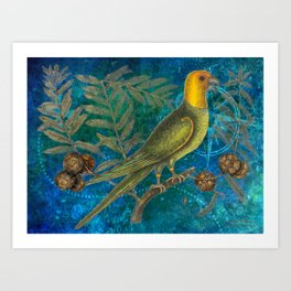 Carolina Parakeet with Cypress, Antique Natural History and Botanical Art Print
