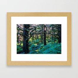 Vibrant Mossy Fields Framed Art Print
