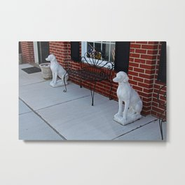 Two Guard Dogs Metal Print