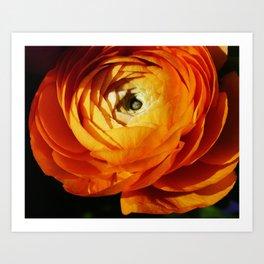 Introspective buttercup beauty Art Print