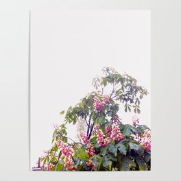 Floral#2 Poster