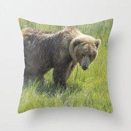 Don't Mess with Mama Bear Throw Pillow