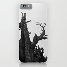 tree film iPhone 6s Slim Case