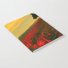 Super Bloom in Sun Notebook