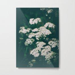 Tiny White Flowers Metal Print