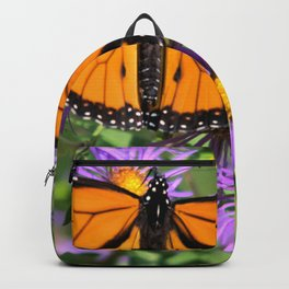 Monarch Butterfly on Wild Asters (square) Backpack