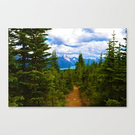 Maligne Lake from Above on the Bald hills hike in Jasper National Park, Canada Canvas Print