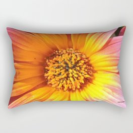 A March 1st Colorburst Rectangular Pillow