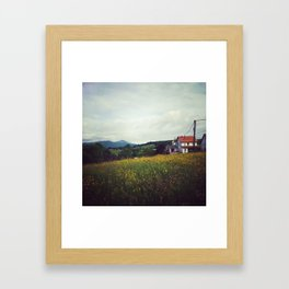 Fields from the Pyrenees Framed Art Print
