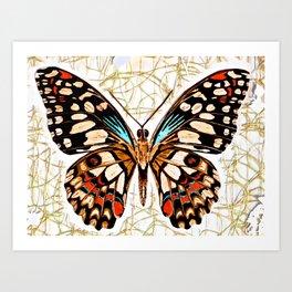 Butterfy Wild Art Print