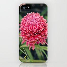 Tropical Flower: Thailand iPhone Case